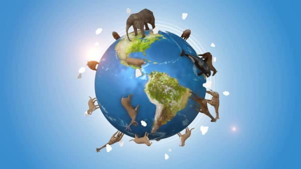 Día de la tierra: Las promesas de las potencias mundiales en la Cumbre del Clima para proteger al planeta