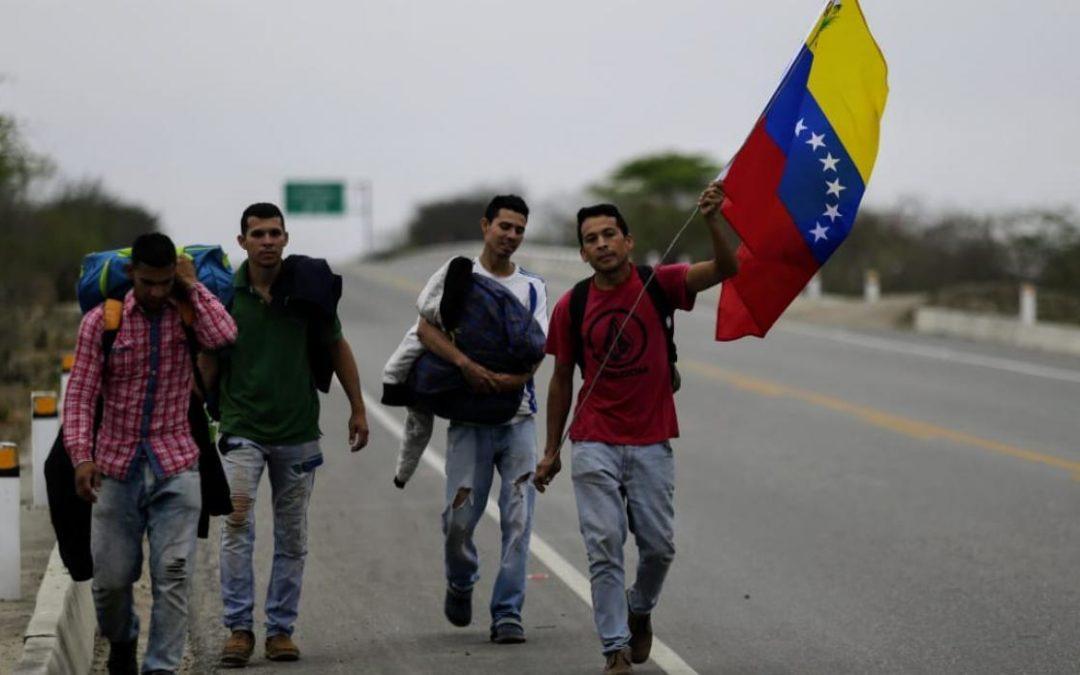 La migración venezolana podría superar a la de Siria en 2022, advirtió a OEA